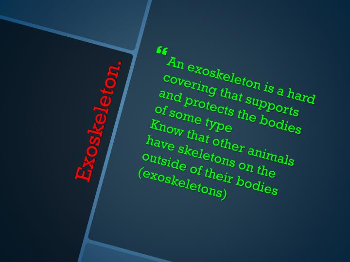 An exoskeleton is a hard covering that supports and protects the bodies of some