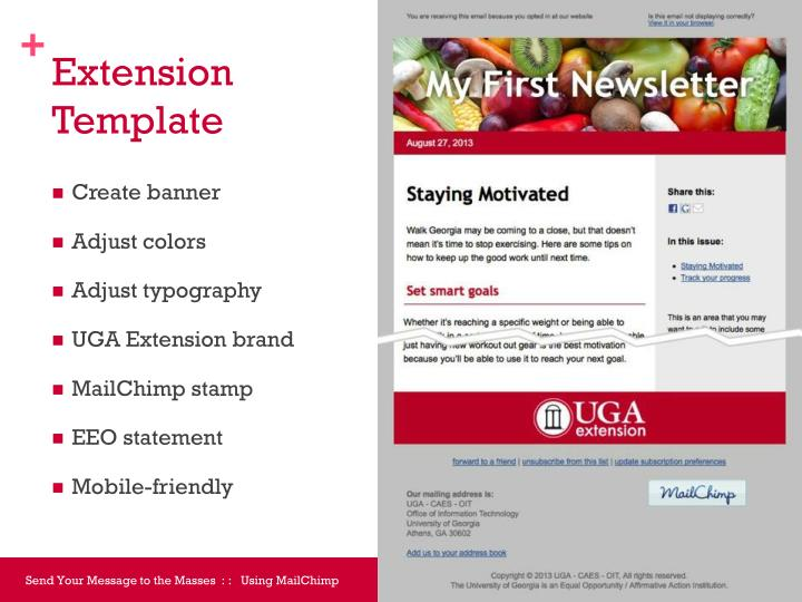 Extension template
