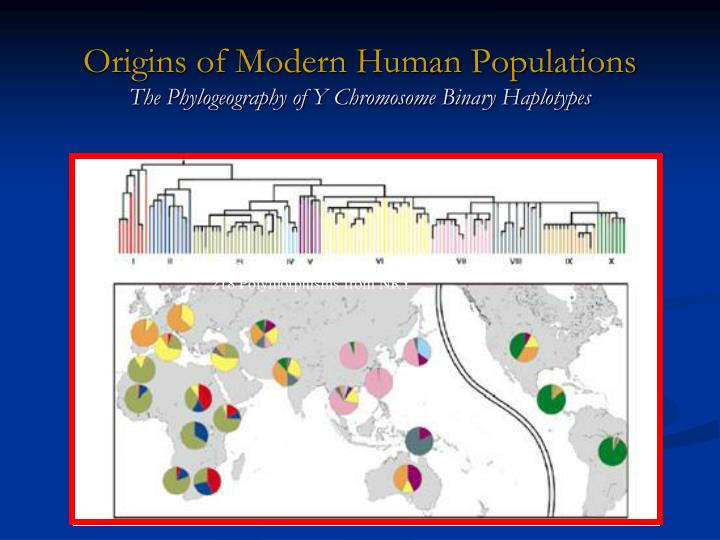 Origins of Modern Human Populations