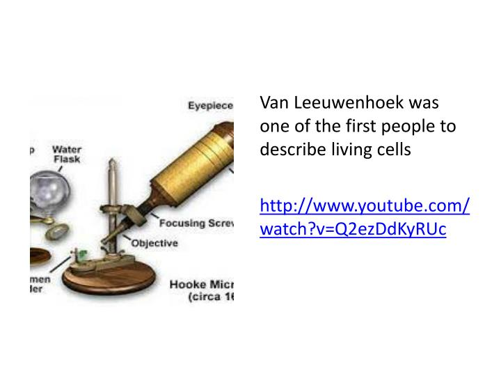 Van Leeuwenhoek was one of the first people to describe living cells