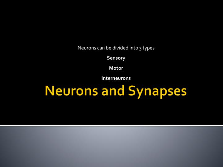 Neurons can be divided into 3 types