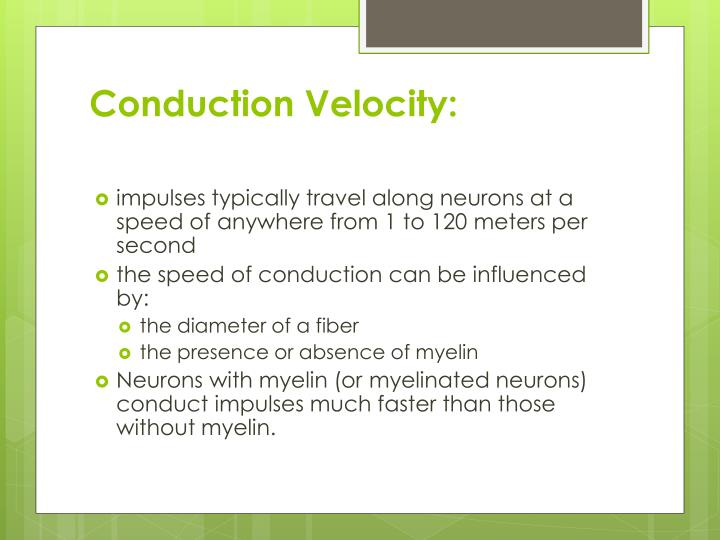 Conduction Velocity: