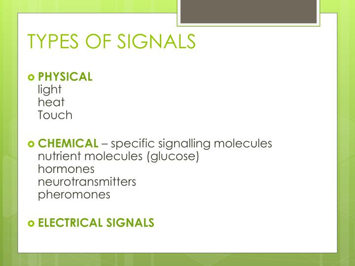 TYPES OF SIGNALS