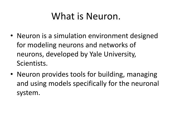 What is neuron