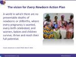 the vision for every newborn action plan
