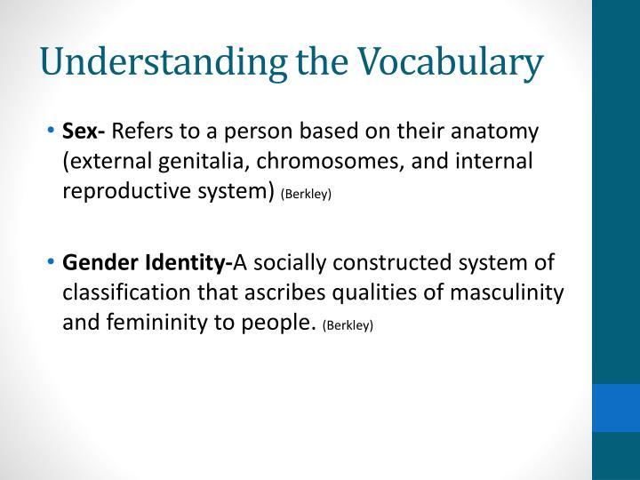 Understanding the vocabulary