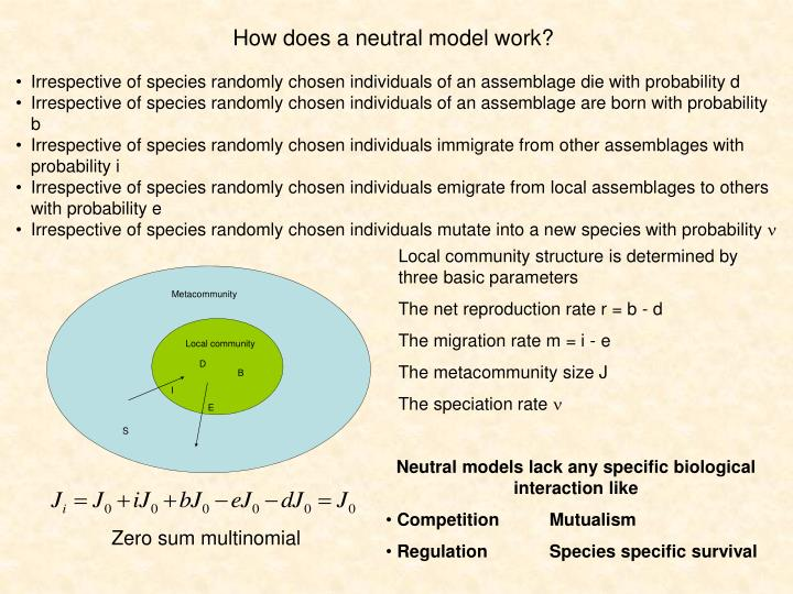 How does a neutral model work?