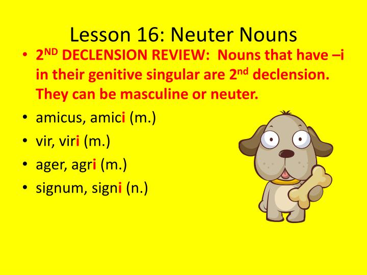 Lesson 16: Neuter Nouns