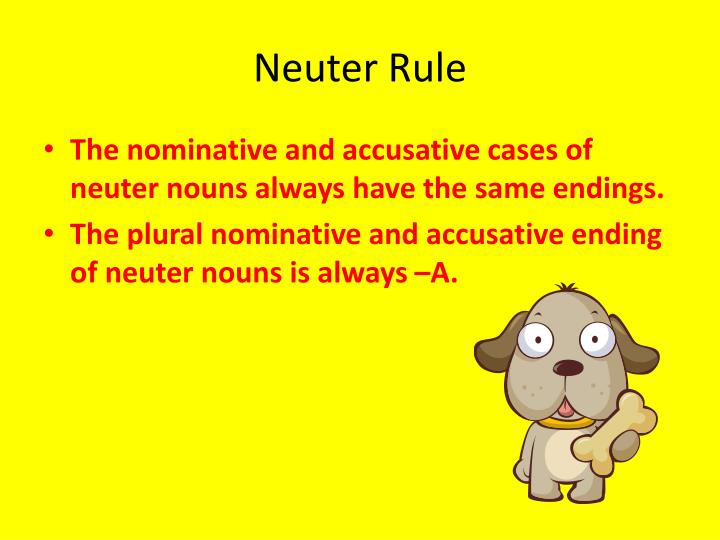 Neuter Rule