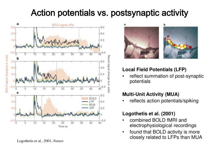 Action potentials vs. postsynaptic activity