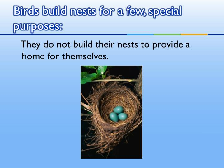 Birds build nests for a few, special purposes: