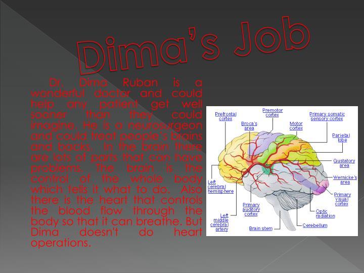 Dima's Job