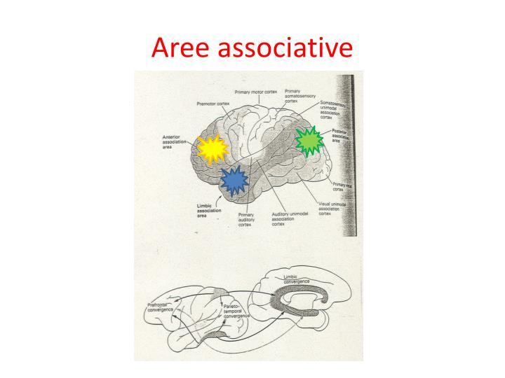 Aree associative