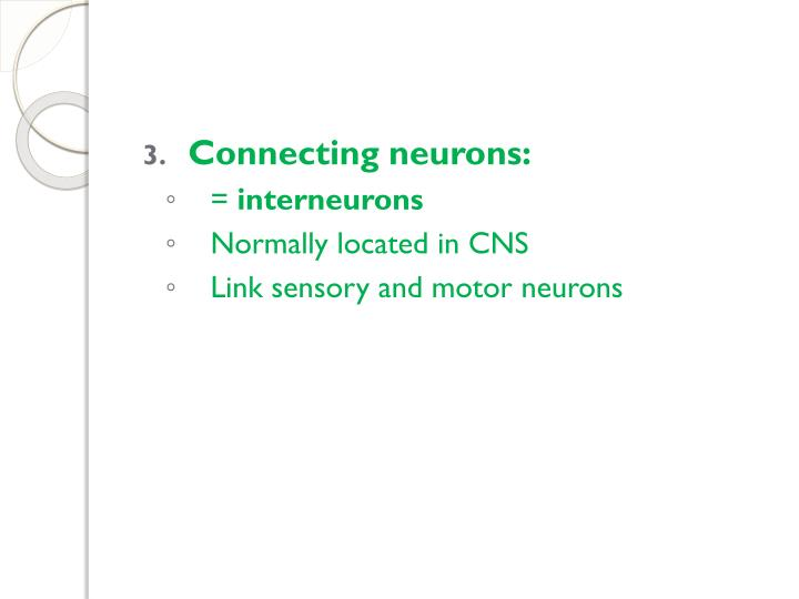Connecting neurons: