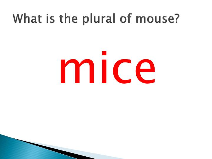 What is the plural of mouse?