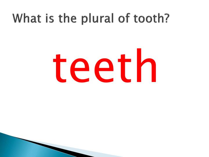 What is the plural of tooth?