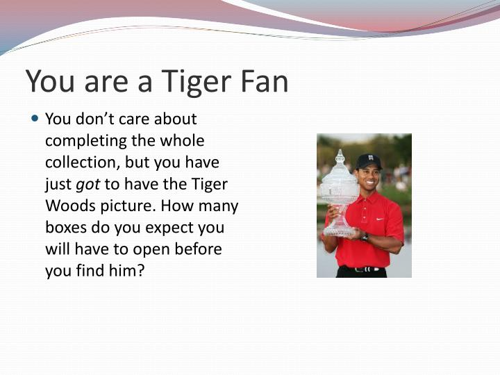 You are a tiger fan