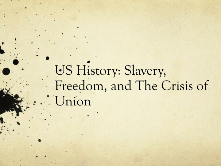 us history slavery freedom and the crisis of union n.