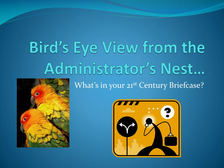 Bird s eye view from the administrator s nest