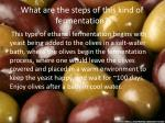 what are the steps of this kind of fermentation