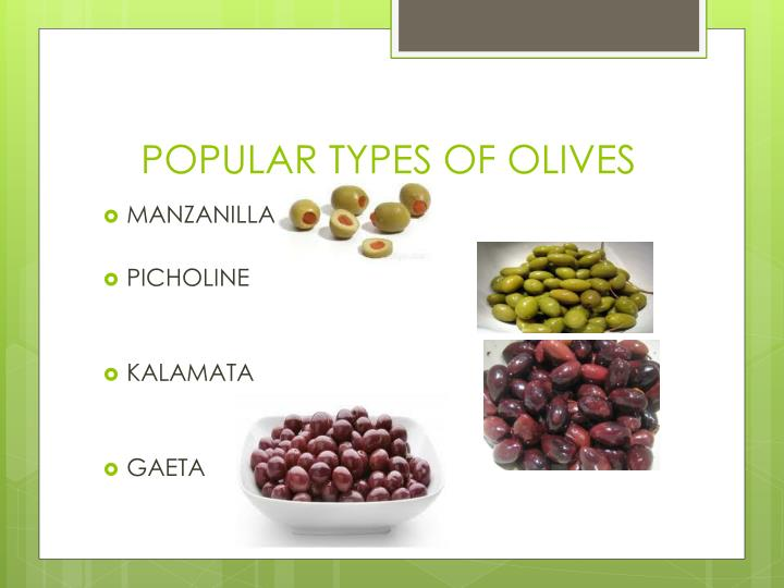 POPULAR TYPES OF OLIVES