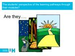 the students perspective of the learning pathways through their modules