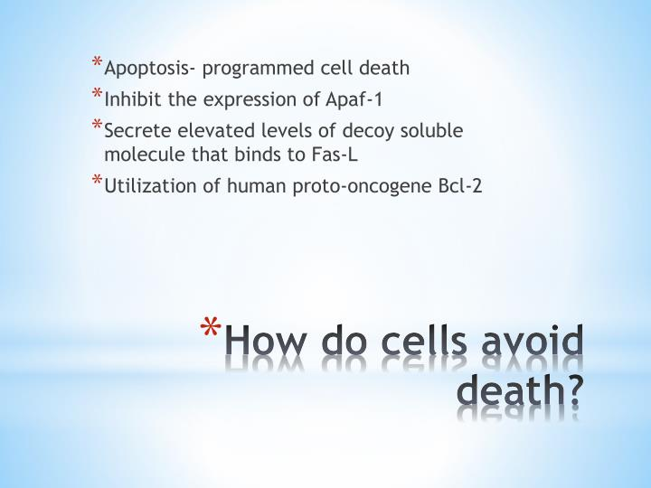 Apoptosis- programmed cell death