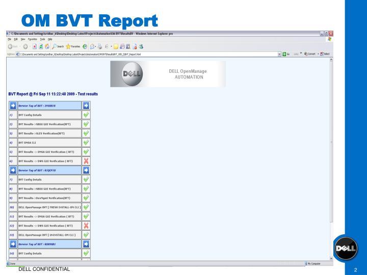 Om bvt report