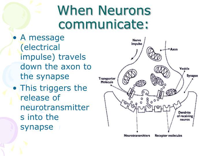 When Neurons communicate: