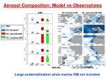 aerosol composition model vs observations