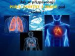 jak se p izp sobuj pl ce ledviny a srdce pod vodou