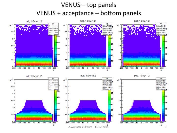 VENUS – top
