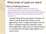 what kinds of leads are there1