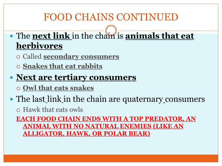 FOOD CHAINS CONTINUED