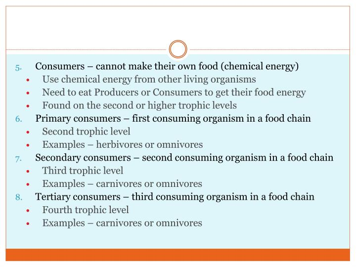 Consumers – cannot make their own food (chemical energy)