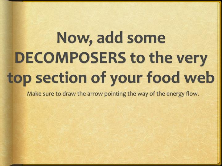 Now, add some DECOMPOSERS to the very top section of your food web