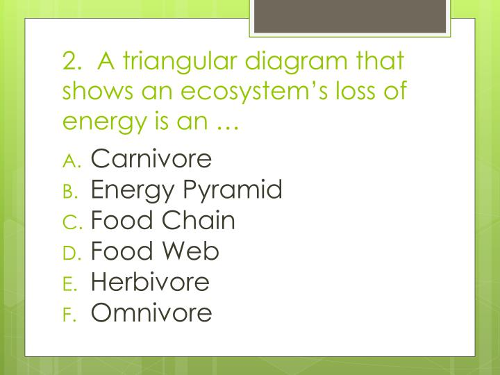 2.  A triangular diagram that shows an ecosystem's loss of energy is an …