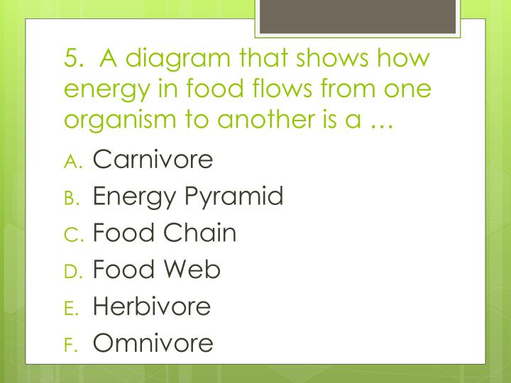 5.  A diagram that shows how energy in food flows from one organism to another is a …