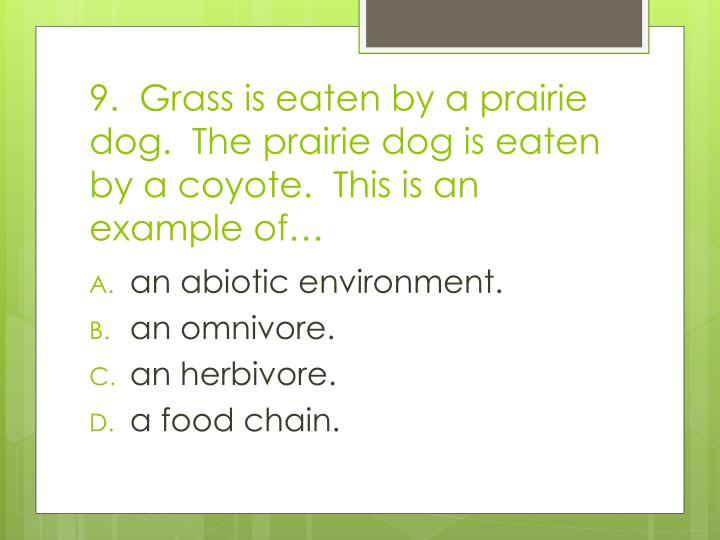9.  Grass is eaten by a prairie dog.  The prairie dog is eaten by a coyote.  This is an example of…