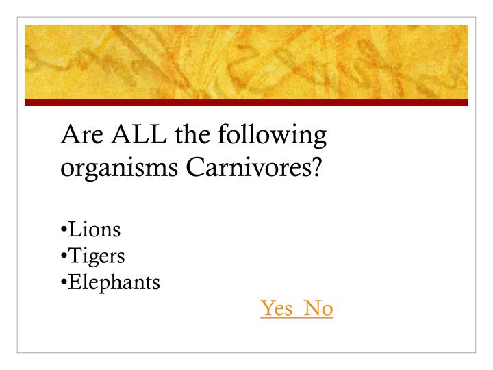 Are ALL the following organisms Carnivores?