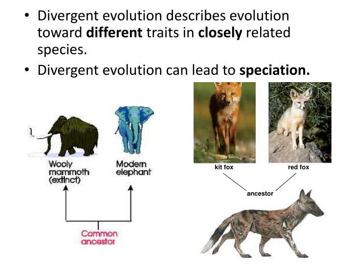 Divergent evolution describes evolution toward