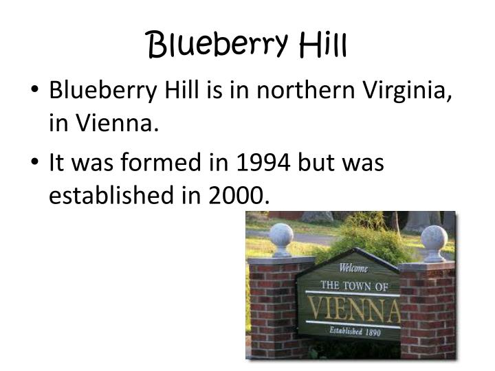 Blueberry hill1