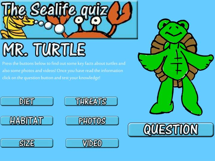 Press the buttons below to find out some key facts about turtles and also some photos and videos! Once you have read the information click on the question button and test your knowledge!