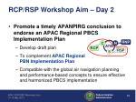 rcp rsp workshop aim day 2