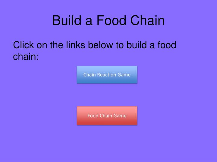 Build a Food Chain