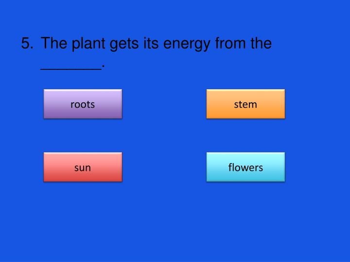 The plant gets its energy from the _______.