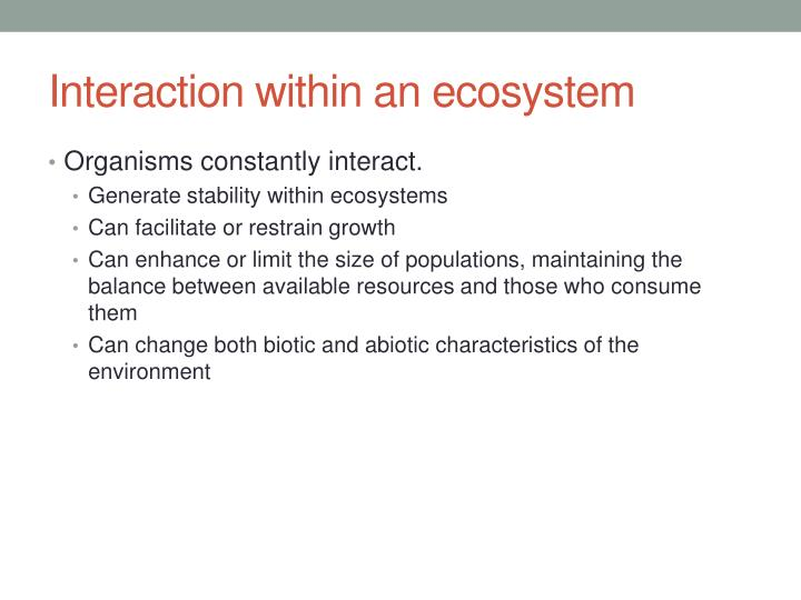 Interaction within an ecosystem