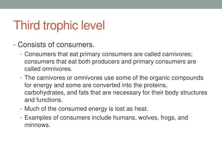 Third trophic level