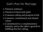 god s plan for marriage2