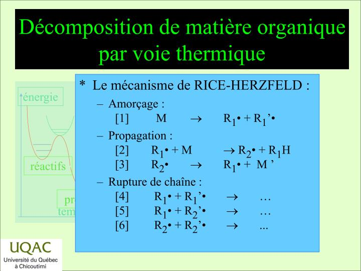 Décomposition de matière organique par voie thermique